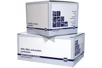 NucleoSpin®RNA Virus (250 preps)